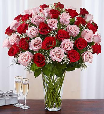 Ultimate Elegance Long Stem Pink and Red Roses