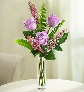 Love''s Embrace™ Roses – Purple