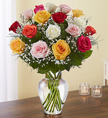 Rose ElegancePremium Long Stem Assorted Roses