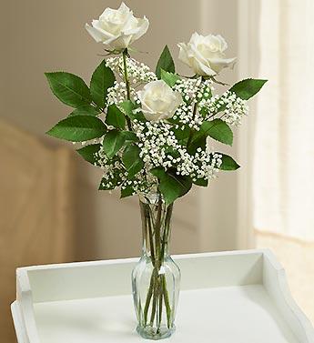 Rose Elegance Premium Long Stem White Roses