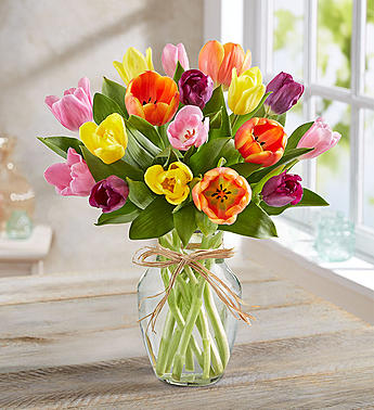 Timeless Tulips®