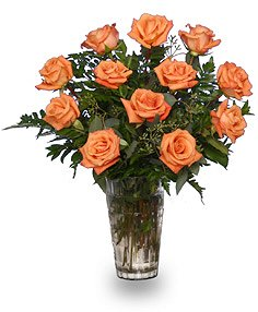 Orange Blossom SpecialVase of Orange Roses