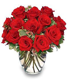 Classic Rose Royale18 Red Roses Vase