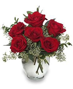 Rosey RomanceRed Rose Bouquet