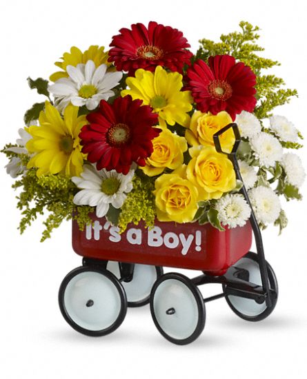 Baby''s Wow Wagon - Boy