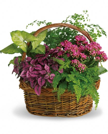 European Garden Basket 10""