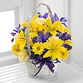 The Spirit of Spring™ Basket