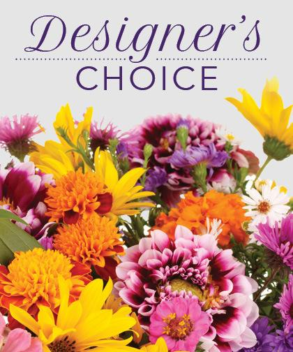 Deal of the Day - Designer's Choice